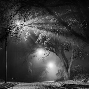 Late night walk by Doug Clement - Black & White Landscapes ( , #GARYFONGDRAMATICLIGHT, #WTFBOBDAVIS )
