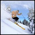 Ski info icon