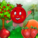 Fruit Juicer icon