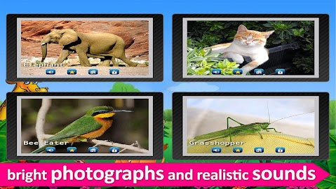 Kids Zoo,Animal Sounds & Photo Screenshot 29