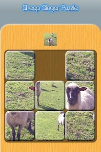 Puzzle - Sheep Slinger- screenshot thumbnail