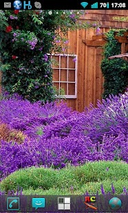 Lavender Garden Live Wallpaper - screenshot thumbnail
