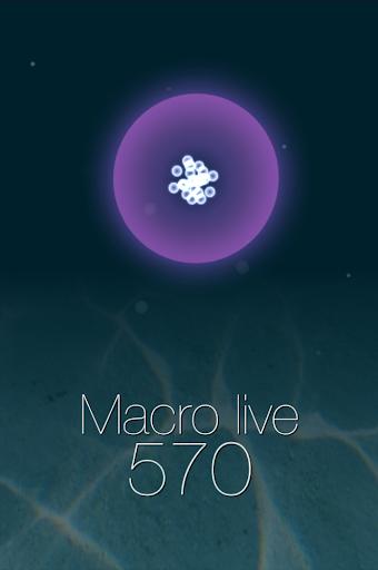 Macro live