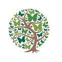 CAS Ventures icon