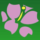 Avas Flowers®- Android APP