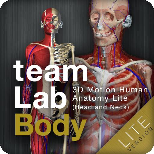 医疗のteamLabBody Lite LOGO-HotApp4Game