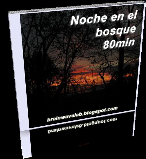 Noche-en-el-Bosque-WEB.png