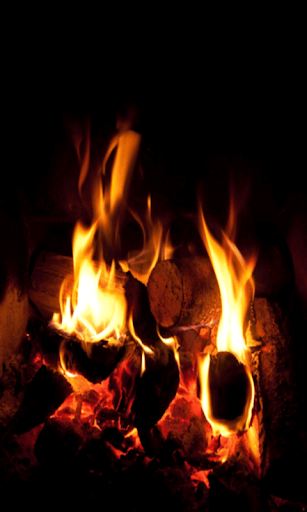 Camp Fire in 3D Live Wallpaper
