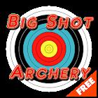 Big Shot Archery - FREE icon