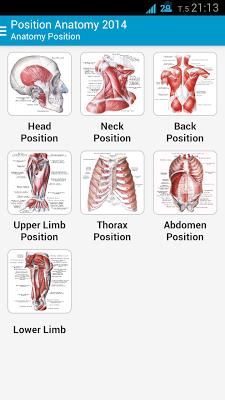 Human Anatomy Position - screenshot