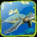 Sea Turtle 3D (PRO)