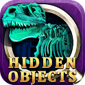 Night at museum Hidden Objects icon
