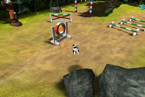 B-Factor Bunny Jumping/Agility - screenshot
