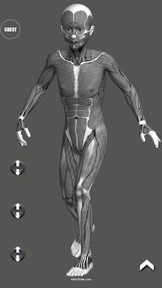 Manga Pose Tool 3Dのおすすめ画像2