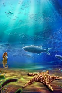 Aquarium Live Wallpaper Live Tv N Radio