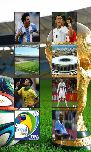 Brazil 2014 World Cup Puzzle