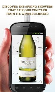 World's Most Curious Bottle- screenshot thumbnail