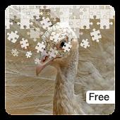 Wild Animal Jigsaw Puzzles