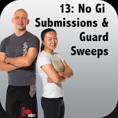 BigStrong 13, Guard Sweeps