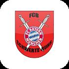 FCB Schwerte Ruhr icon