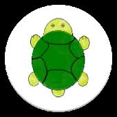 Nimble Turtle