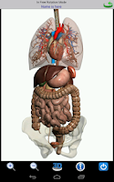 Screenshot of Visual Anatomy