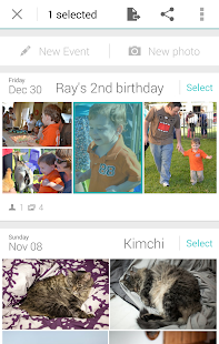 Ivy Gallery, all photos in one - screenshot thumbnail