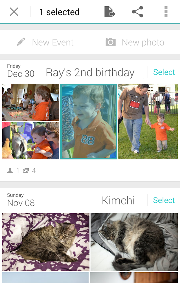 Ivy Gallery, all photos in one - screenshot