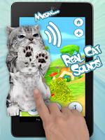 Screenshot of Talking Cat Funny Kitten Sound