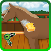 Caring Horses Games