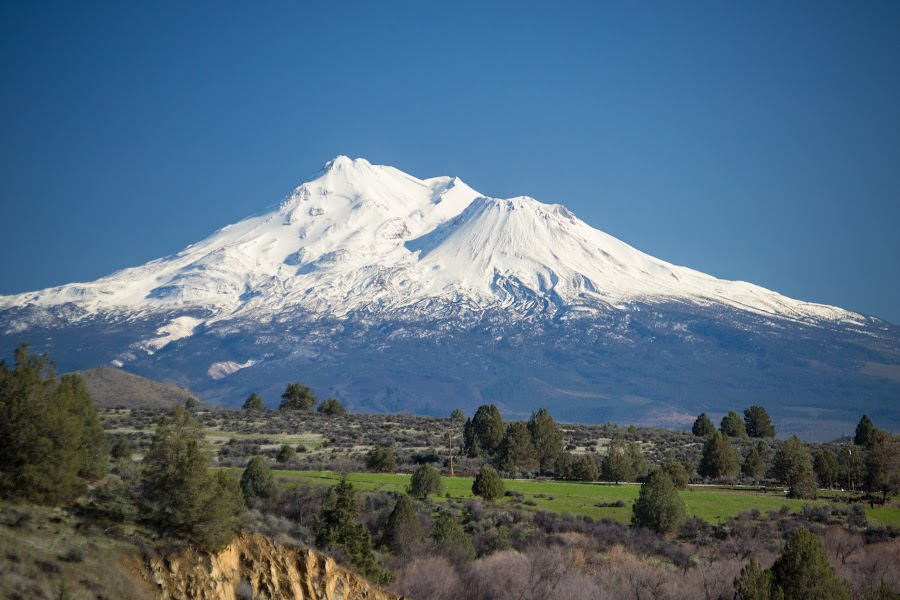 Mt. Shasta by Scott Morgan - Landscapes Mountains & Hills ( shasta, mountain, volcano, mt., blue, snow, covered,  )