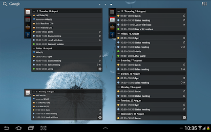 All-in-One Agenda widget Screenshot 10