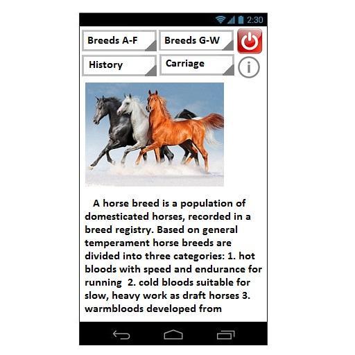 Horses Recount