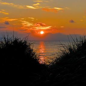 Anglesey Sunset by Don Cardy - Uncategorized All Uncategorized (  )