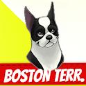 Boston Terrier icon