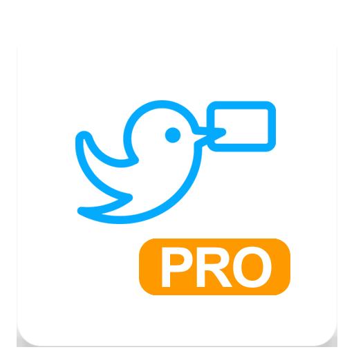 WebWeaver Pro
