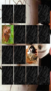 Memory - Cute Animals - screenshot thumbnail