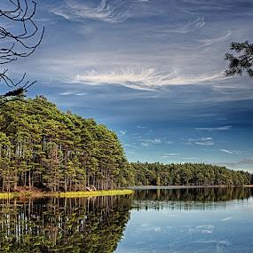 Loch Garten by Jacek Steplewski - Landscapes Waterscapes ( water, scotland, water reflection, sky, cluds, waterscape, reflections, trees, forest, lake, landscape,  )