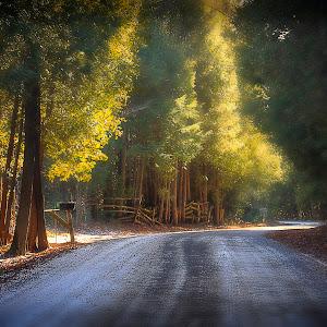 Country Road Dec 7, 2014.jpg