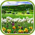 Spring Natu.. file APK for Gaming PC/PS3/PS4 Smart TV