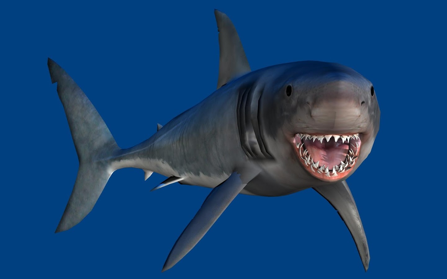 talking shark android apps on google play talking shark screenshot