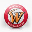 SK Wyverns icon