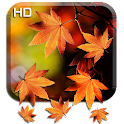 Autumn HD Live Wallpaper icon
