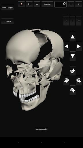 Introdução à Anatomia Humana 04
