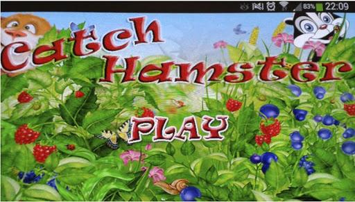 Catch Hamster free