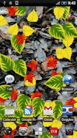 Screenshot of Autumn Leaves Donate LWP