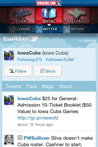 Iowa Cubs - screenshot
