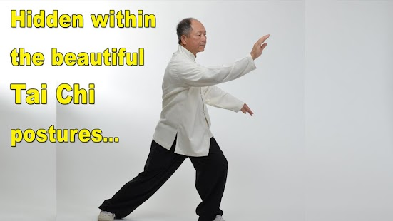 Tai Chi Martial Applications- screenshot thumbnail