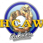 HCAW SH2 icon