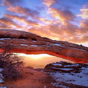 Rising Sandstone by Blaine Cox - Landscapes Deserts